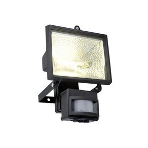 Eglo EGLO 88813 - Venkovní reflektor ALEGA 1xR7s/400W EG88813