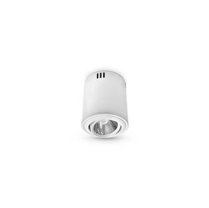 Brilum LED Stropní svítidlo 1xLED/12W/230V B0983